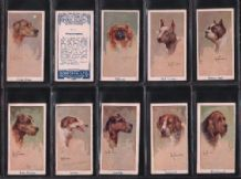 Cigarette cards Leo Chambers Dogs Heads 1924 / Moustafa